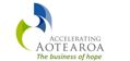 Accelerating Aotearoa Incorporated